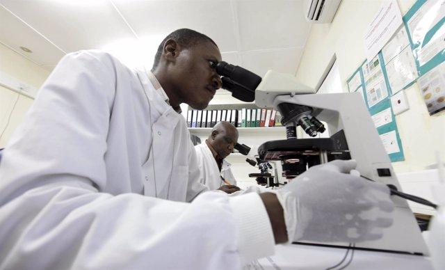 Médicos investigan muestras en su lucha contra la malaria.