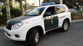 Destapan una trama dedicada a falsificar expedientes en los trámites de transferencias de vehículos