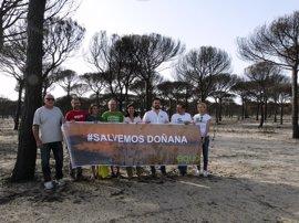 """EQUO plantea blindar Doñana """"por ley"""" frente a las distintas amenazas que lo acechan"""