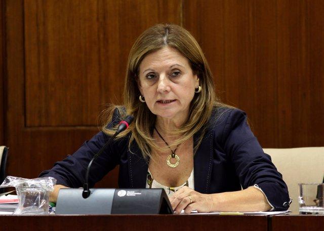 Marina Álvarez en la Comisión de Salud en el Parlamento