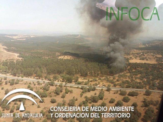 Incendio forestal en Zalamea la Real.