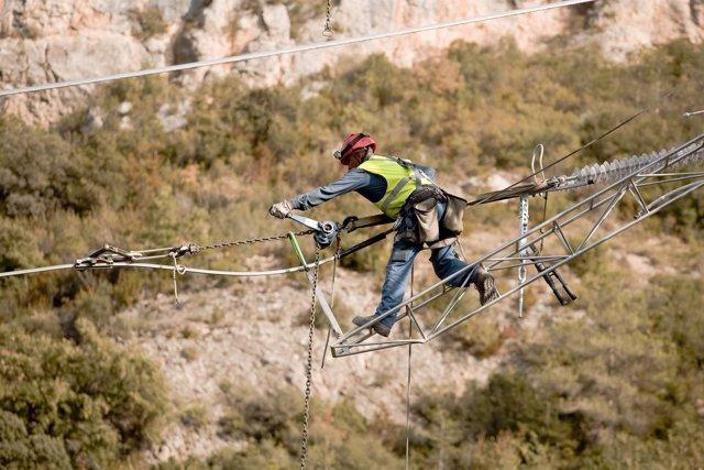 Un operario de Endesa trabajando en una línea de alta tensión