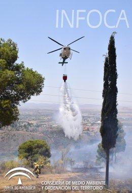 Estabilizado el incendio en el paraje de la Alhambra