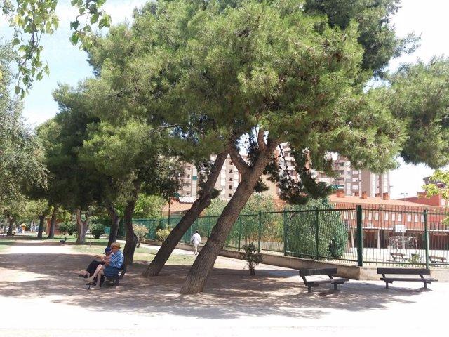 El PP exige la poda urgente de árboles en La Almozara