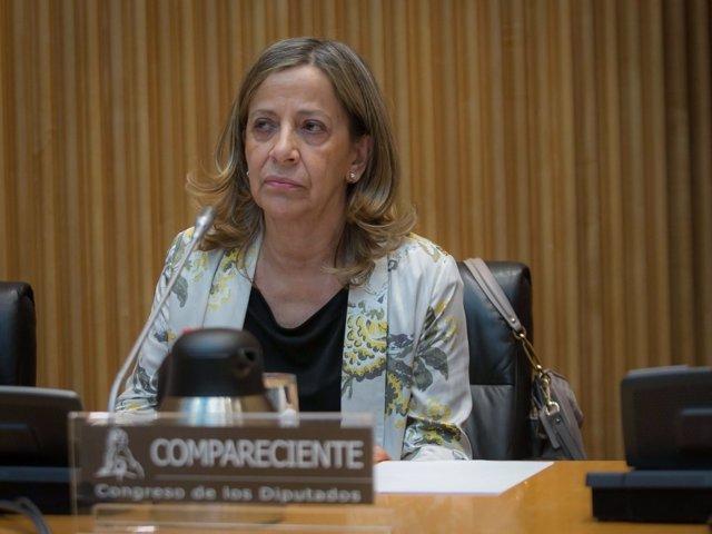 Carmen Navarro, tesorera del PP