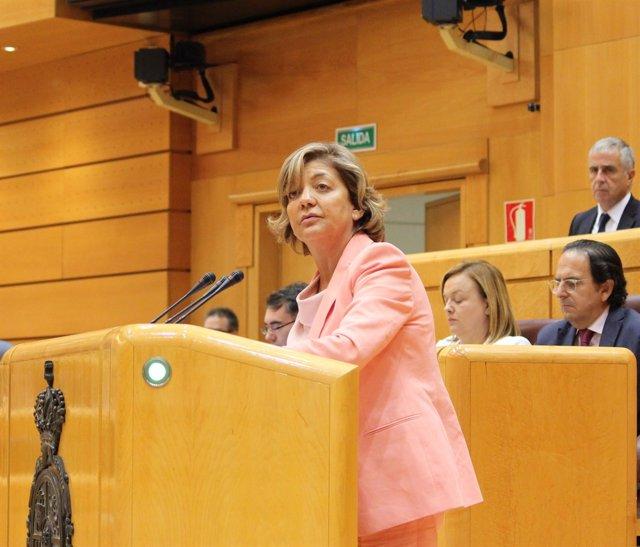 La portavoz adjunta del PP en el Senado Rosa Vindel