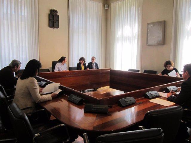 Comisin de investigación sobre las listas de espera de la sanidad asturiana
