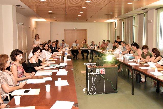 Reunión del comité del Ib-salut