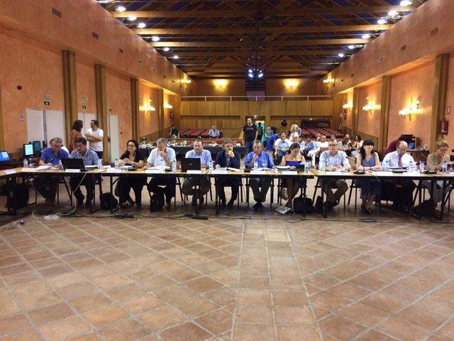Pleno del Consejo de Participación de Doñana.