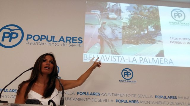 El PP denuncia el estado del arbolado de la ciudad