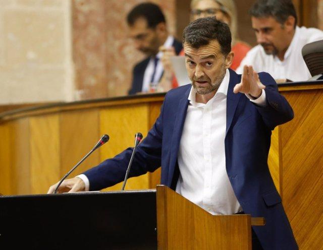 Antonio Maíllo, este miércoles en el Parlamento andaluz