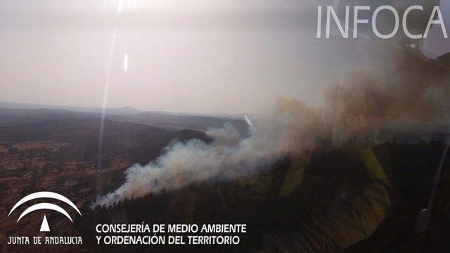 Incendio forestal en Calañas