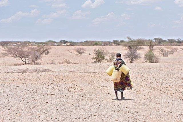 Una mujer camina para recoger agua en Kenia