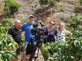 Un programa de la televisión británica se interesa por los mangos de Almuñécar (Granada)