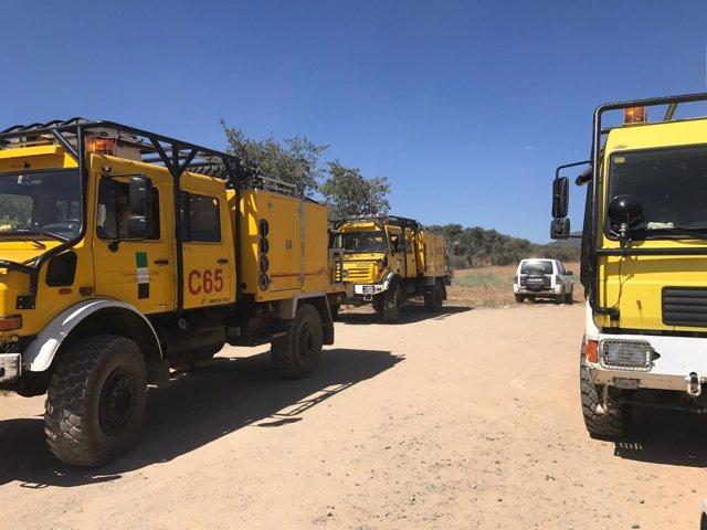 Camiones del Infoex