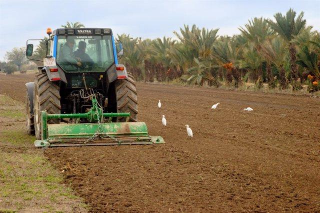 Agricultores trabajando en un campo