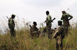 Cinco guardias forestales congoleños muertos en una operación militar para rescatar a un periodista de EEUU