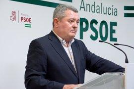 """PSOE-A: El recurso al TC a las 35 horas """"pone en riesgo más de 7.000 empleos"""""""