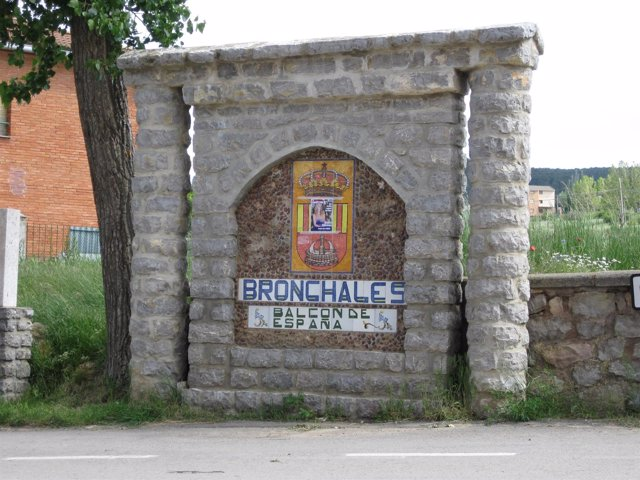 Bronchales