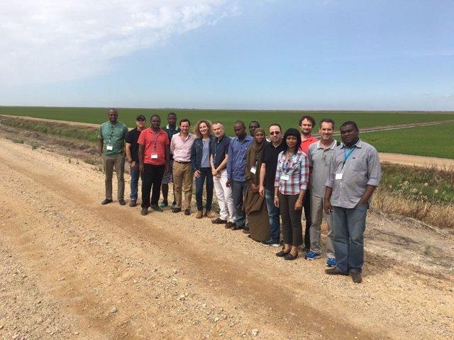 Delegaciones de Costal de Marfil y Níger visistan arrozales en Doñana