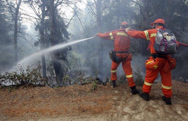 Bomberos combaten un incendio en Sicilia
