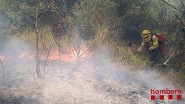 Los bomberos trabajan en un incendio forestal en Teià (Barcelona)