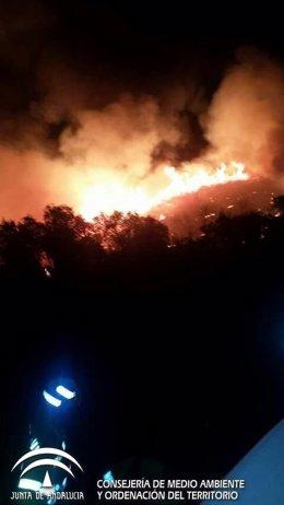 Incendio en un paraje de Aznalcóllar (Sevilla)