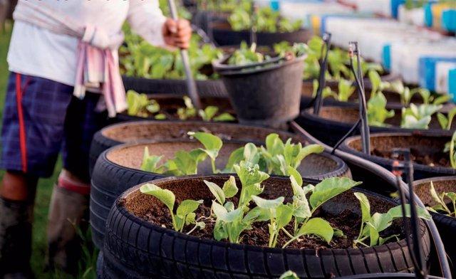 Imagen de un uso para neumáticos reciclados