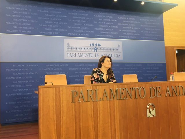 La portavoz parlamentaria del PP-A, Carmen Crespo