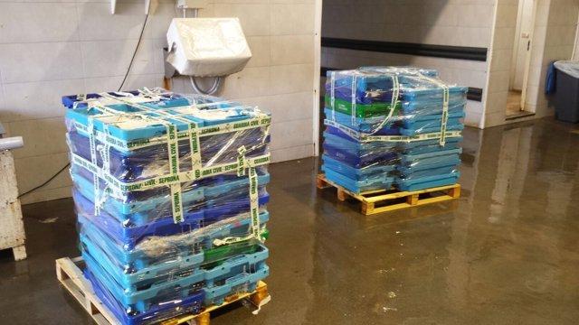 Cajas de pescado precintado por la Guardia Civil en Altea