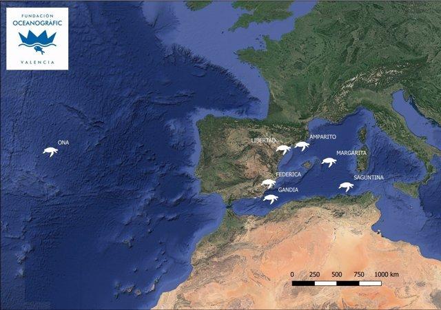 Seguimiento de las tortugas vía satélite