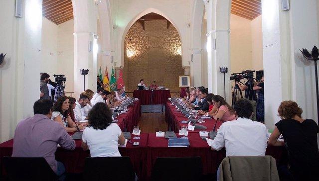 Pleno de Diputación celebrado en Tarifa