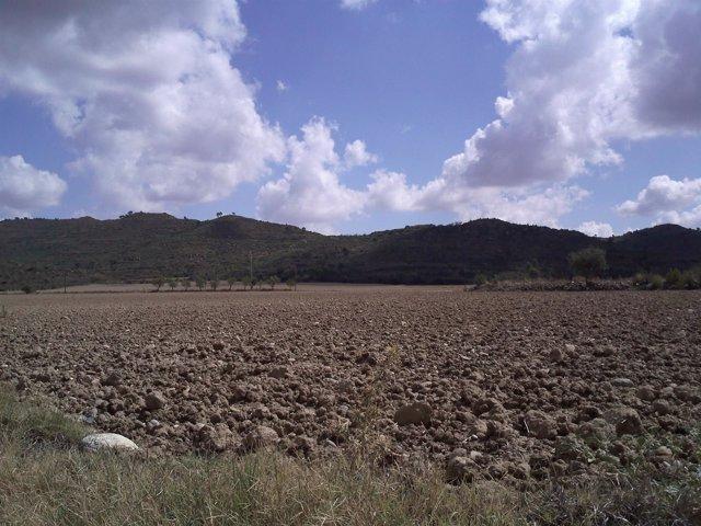 Campos Labrados En Eres (Huesca)
