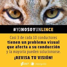 Campaña de la DGT y 'Visión y Vida' en redes sociales