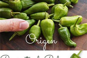 ¿Sabías que los pimientos de Padrón españoles son nativos de México?