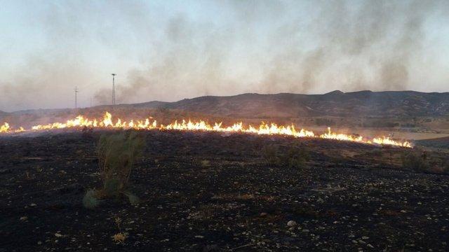 Incendio forestal en Antequera (Málaga)