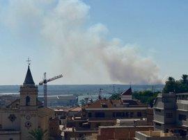El incendio de Gibraleón queda estabilizado y la A-492 se reabre totalmente al tráfico