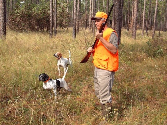 Imagen de caza