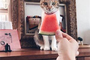 ¿Has hecho el 'Watermelon dress'? Así es el nuevo reto viral que triunfa en las redes