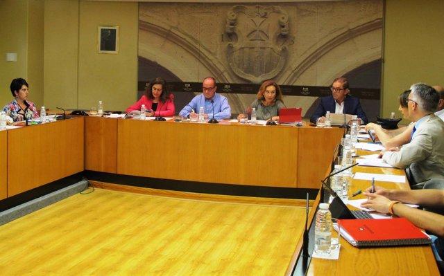 María Martín, durante su comparecencia en el Parlamento