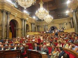 """Forn reitera que los Mossos garantizarán el voto """"libre y seguro"""" el 1-O"""