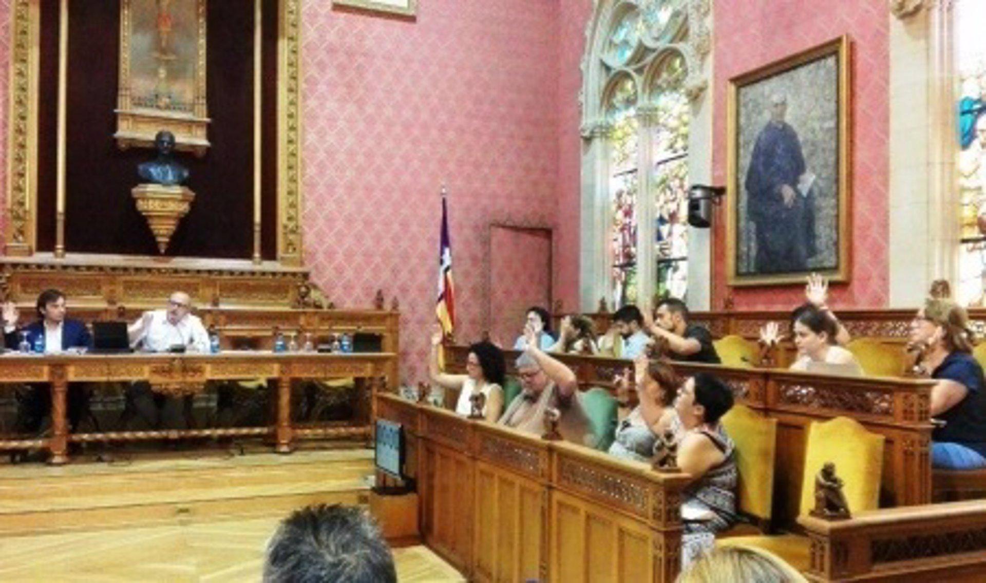 El PI pide explicaciones al Consell por la contratación de la exconsellera Ruth Mateu en el IMAS