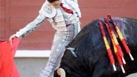 """Armengol dice que la argumentación del Gobierno para recurrir la Ley de toros balear """"no es jurídica, sino muy política"""""""