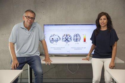 Tocar un instrumento musical mejora la conectividad audio-motora en el cerebro