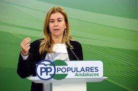 """Ruiz-Sillero (PP-A) cree que el juzgado reconoce """"tácitamente"""" su derecho a pedir información en Portal de Transparencia"""