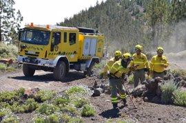 El Cabildo de Tenerife establece dispositivos en los accesos al monte para informar sobre el riesgo de incendio forestal