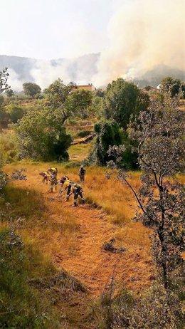 Brigada forestal Murcia en incendio Yeste