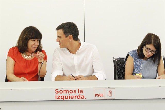 Reunión de la Comisión Ejecutiva Federal del PSOE con Pedro Sánchez