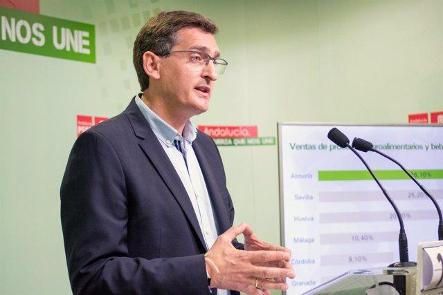Sánchez Teruel, en rueda de prensa en Almería