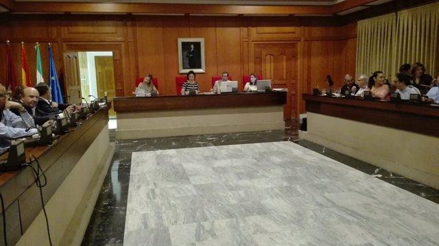 Un momento del Pleno del Ayuntamiento